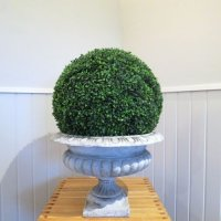 urn-boxwood-ball-medium